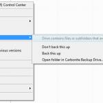 Carbonite folder options